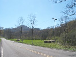 The Proposed Field beside Scenic Route 219